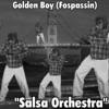 Salsa Orchestra Single