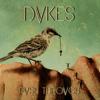 Dvkes - Push Through kunstwerk