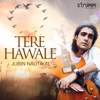 Tere Hawale Single