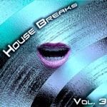 House Breaks, Vol. 3