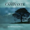 Caminante - Single - Domingo Lemus