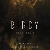 Words (We Are I.V Remix) [feat. Navii] - Single