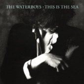 The Waterboys - Spirit (Full Length)