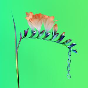 Flume - Skin Companion EP I