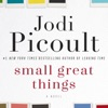 Small Great Things: A Novel (Unabridged) AudioBook Download