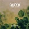 Mesa Verde - EP, Calippo