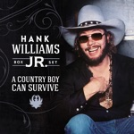 Hank Williams, Jr. & Waylon Jennings - The Conversation