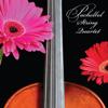 Pachelbel String Quartet - Pachelbel Canon in D artwork