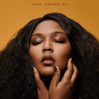 Download lagu Lizzo - Good as Hell