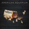 American Aquarium - Old North State bild