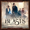 Fantastic Beasts and Where to Find Them (Original Motion Picture Soundtrack) [Deluxe Edition], James Newton Howard