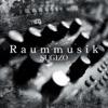 Raummusik - Single ジャケット写真
