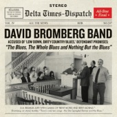 David Bromberg Band - Eyesight To The Blind