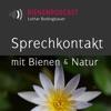 Bienengespräche - Bienenpodcast (mp3)
