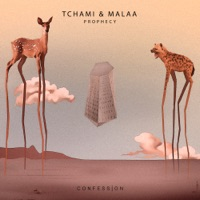 Prophecy (Joey Rumble rmx) - TCHAMI-MALAA