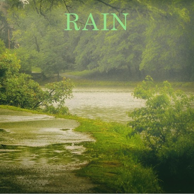Rain - Rain Sounds album