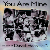 You Are Mine: The Best of David Haas, Vol. 2