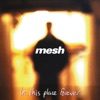 In This Place Forever, Mesh