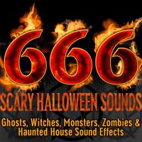 Halloween FX Productions - Spirit Cries artwork