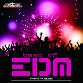 Best of EDM Party 2016