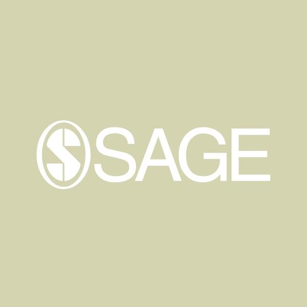 SAGE Social Work & Social Policy