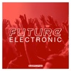 Future Electronic