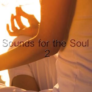 Yoga Music & Internal Yoga Music - Sounds For the Soul 2