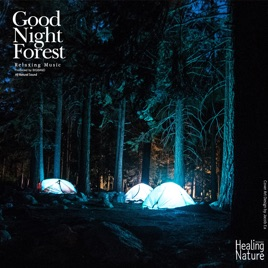 good night forest by nature sound band on apple music