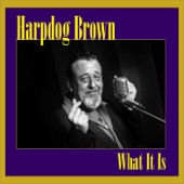 Harpdog Brown - Headin' Out