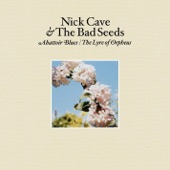 Nick Cave & The Bad Seeds - Easy Money