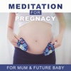 Meditation for Pregnacy: Calming Music for Mum & Future Baby, Newborn Deep Sleep, Calm & Relax, Yoga - Pregnant Women Music Company
