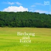 Birds Song and Forest, Vol.2 - EP - Nature Sound Band