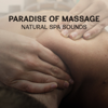 Tranquility Day Spa Music Zone - Paradise of Massage – Natural Spa Sounds, Music for Relaxation, Aromatherapy & Wellness, Healing Effect of Touch artwork