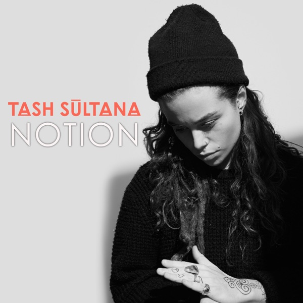 Notion (Radio Edit) - Single