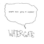 Watergate - Walking into the Shower with Your Glasses On