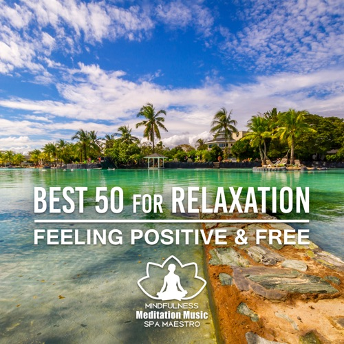 DOWNLOAD MP3: Mindfulness Meditation Music Spa Maestro