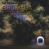 The 12 Days of Brumalia ジャケット写真