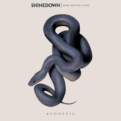 How Did You Love - Single - Shinedown
