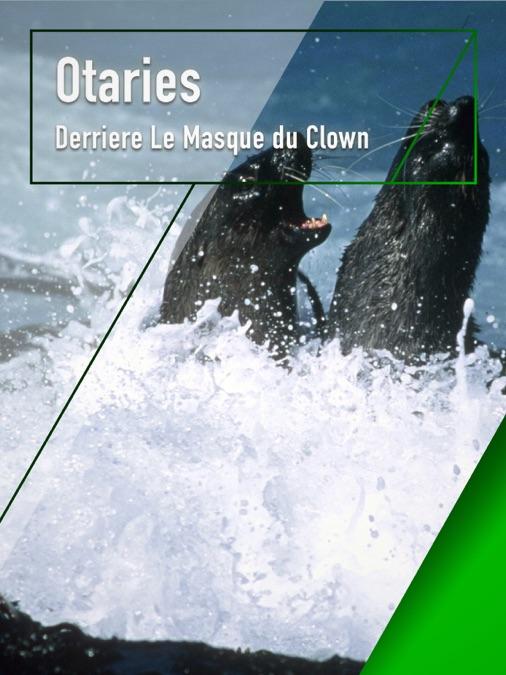 Otaries, derrière le masque de clown 1200x675mf