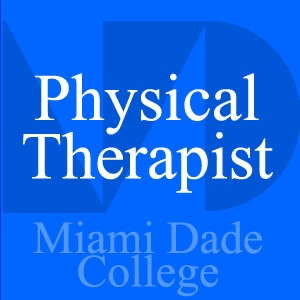 Physical Therapist - Ken Lee - Video