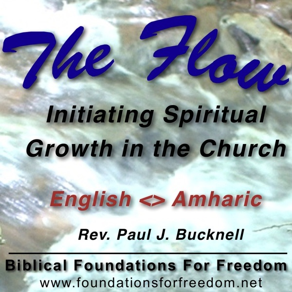 Amharic: Initiating Spiritual Growth in the Church -Audios, Videos and Articles