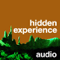 hidden experience audio