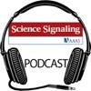 Science Magazine Podcast artwork