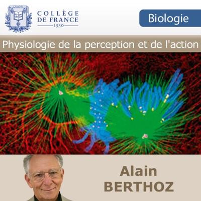 Physiologie de la perception et de l'action