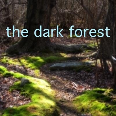 The Dark Forest:Ranger John
