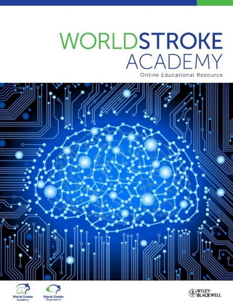 World Stroke Academy, Exercise After Stroke - Introduction