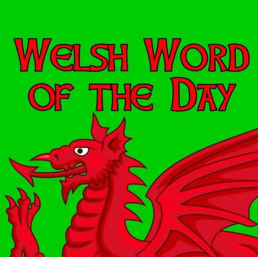 Cover image of Welsh Word Of The Day