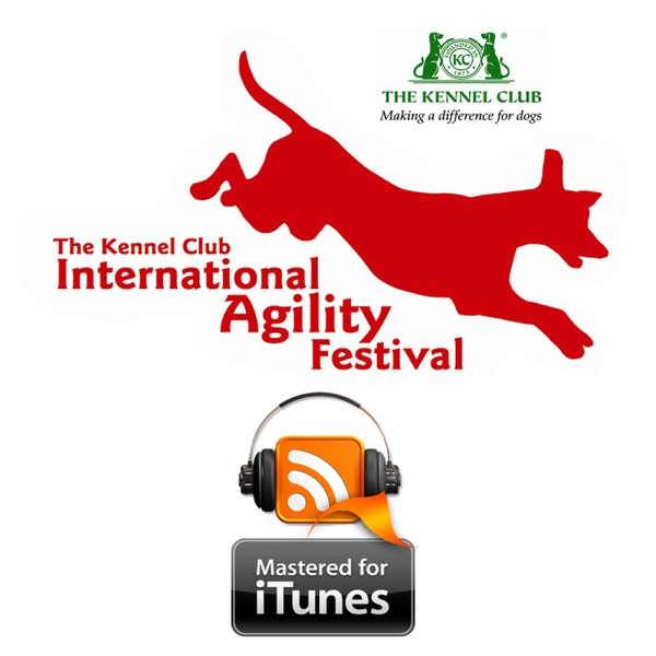 Kennel Club International Agility Festival 2015