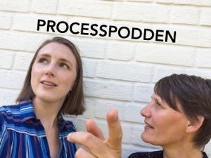 Processpodden
