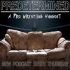Predetermined: A Pro Wrestling Hangout artwork